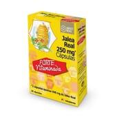 O Arkoreal Geleia Real Vitaminada 250mg é energia e vitalidade no teu dia a dia.