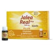 Juanola Geleia Real Plus recupera a vitalidade!