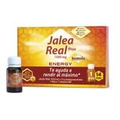 Juanola Geleia Real Energy Plus rende ao máximo.