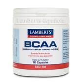 Protégez vos muscles avec BCAA de Lamberts.