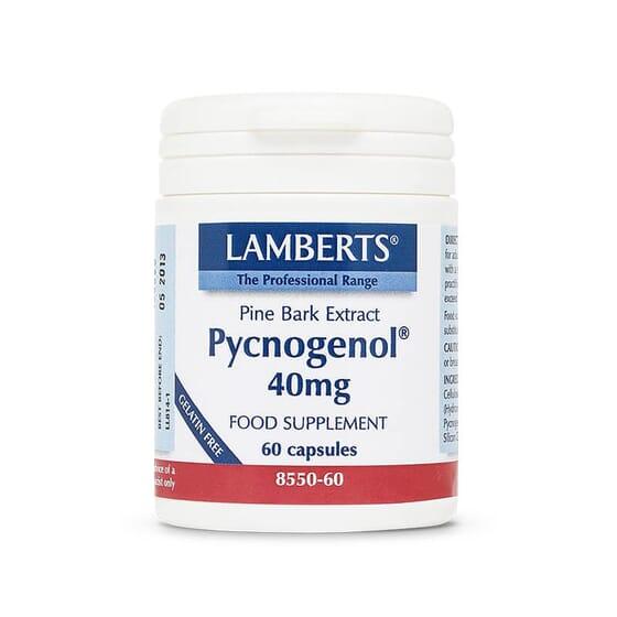 Pycnogénol, puissantes propriétés antioxydantes.