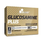 Glucosamina Plus cuida da tua saúde articular.