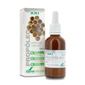 Extracto de Propóleo XXI ayuda al normal funcionamiento del sistema inmunitario.