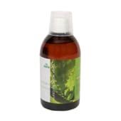 Jugo de Aloe Vera 500ml - Sotya - Ecológico