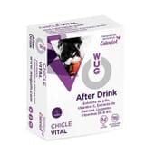 WUG AFTER DRINK CHEWING-GUM VITAL 6 Chewing-gums de Wugum