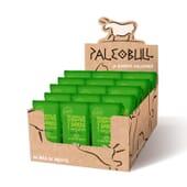 Paleobull Barrita Vegana de Manzana - 15 barritas de 55g