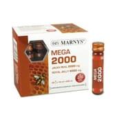 MEGA 2000 GELEIA REAL 20 Frascos de 10ml da Marnys