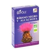 Biopolé Radis Noir et Artichaut Bio 20x10 ml - Dietéticos Intersa
