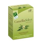 Camellia Select 60 Vcaps da Cien Por Cien Natural