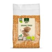 Trigo en Grano Bio 500g - Nutrione ECO - 100% Ecológico