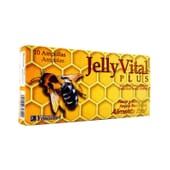 JELLY VITAL PLUS 10 Ampollas de 10ml de Ynsadiet