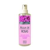 EAU DE ROSE TONIQUE 250 ml de Bifemme