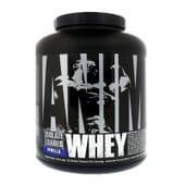 ANIMAL WHEY 2260g de Universal Nutrition