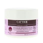 Cattier Masque Réparateur Cheveux Secs Bio 200 ml