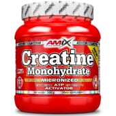 CREATINE MONOHYDRATE MICRONIZED 300 g d'Amix Nutrition
