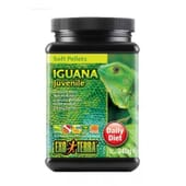 Aliment Iguane Junior 260g de Exo Terra