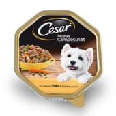 Terrina Receita Camponesa Frango e Verduras Para Cão 150g da Cesar