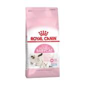 Crocchette Gatto Mother & Babycat 2 Kg di Royal Canin