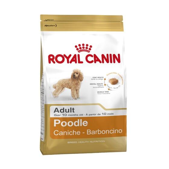 Pienso Caniche Adulto 7,5 Kg de Royal Canin