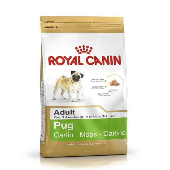 Ração Carlino Adulto 3 Kg da Royal Canin