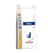 Veterinary Diet Pienso Gato Adulto Renal 4 Kg de Royal Canin