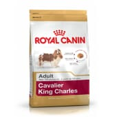 Pienso Cavalier King Charles Adulto 1,5 Kg de Royal Canin