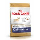 Ração Chihuahua Junior 500g da Royal Canin