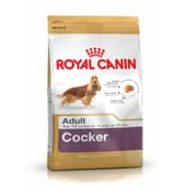 Ração Cocker Adulto 3 Kg da Royal Canin