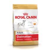 Pienso Dálmata Adulto 12 Kg de Royal Canin
