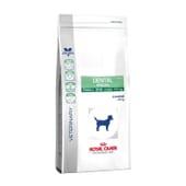 Pienso Perro Adulto Dental Especial Razas Pequeñas 2 Kg de Royal Canin