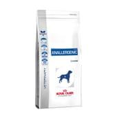 Veterinary Diet Pienso Perro Adulto Anallergenic 8 Kg de Royal Canin