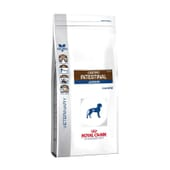 Veterinary Diet Ração Cão Junior Gastrointestinal 10 Kg da Royal Canin