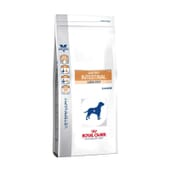Veterinary Diet Pienso Perro Adulto Gastrointestinal Low Fat 6 Kg de Royal Canin