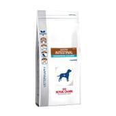 Veterinary Diet Ração Cão Adulto Gastrointestinal Moderate Calorie 14 Kg da Royal Canin