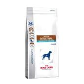 Veterinary Diet Ração Cão Adulto Gastrointestinal Moderate Calorie 2 Kg da Royal Canin