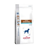Veterinary Diet Pienso Perro Adulto Gastrointestinal Moderate Calorie 7,5 Kg de Royal Canin