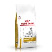 Veterinary Diet Ração Cão Adulto Urinary S/O Moderate Calorie 1,5 Kg da Royal Canin