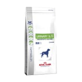 Veterinary Diet Pienso Perro Adulto Urinary S/O Moderate Calorie 6,5 Kg de Royal Canin