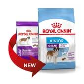 Ração Cão Junior Raças Gigantes 15 Kg da Royal Canin
