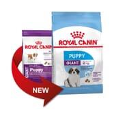Ração Cachorro Raças Gigantes 15 Kg da Royal Canin