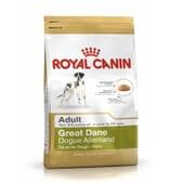 Ração Gran Danés Adulto 12 Kg da Royal Canin