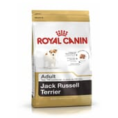 Pienso Jack Russell Adulto 3 Kg de Royal Canin