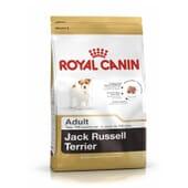 Ração Jack Russell Adulto 7,5 Kg da Royal Canin