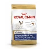 Pienso Bulldog Francés Junior 1 Kg de Royal Canin