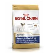 Ração Bulldog Francês Junior 1 Kg da Royal Canin