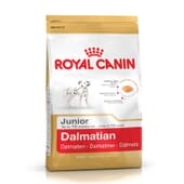 Ração Dálmata Junior 12 Kg da Royal Canin