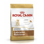 Ração Labrador Retriever Junior 12 Kg da Royal Canin