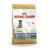 Pienso Pastor Alemán Junior 3 Kg de Royal Canin