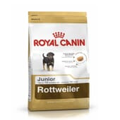 Pienso Rottweiler Junior 12 Kg de Royal Canin