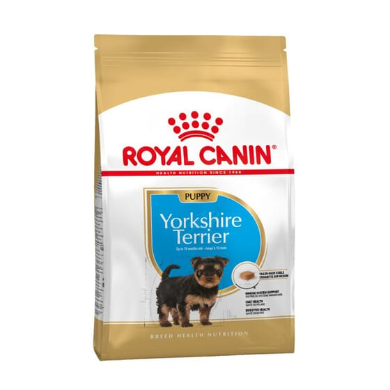 Ração Yorkshire Terrier Junior 1,5 Kg da Royal Canin